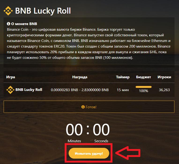 Описание криптовалюты bnb