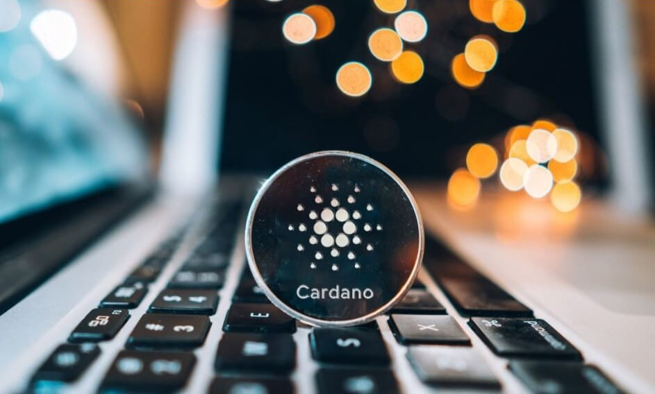 Стейкинг криптовалюты Cardano в кошельке Exodus