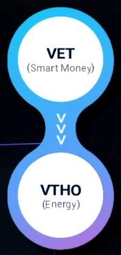 токен vechain vet и токен vtho vethor